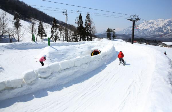 JSBA公認AZ プロスノーボーディングスクール戸隠校(長野)