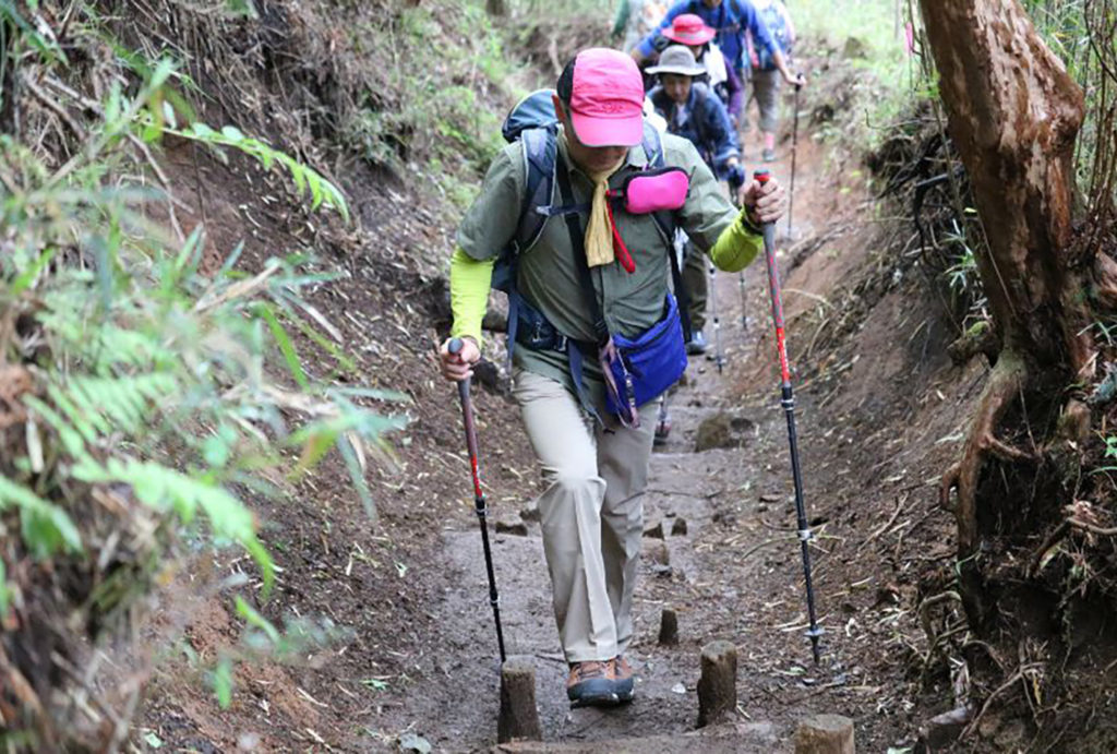 キャラバンツアー登山教室   東京都